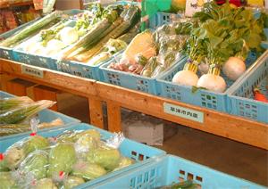 地元産野菜